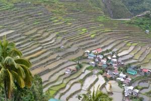 フィリピンイフガオ1